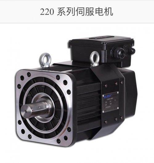 heavy loading servo motor